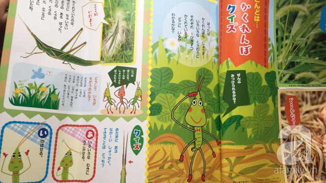 Thích thú với cách người Nhật dùng côn trùng làm giáo cụ dạy trẻ - Ảnh 5.