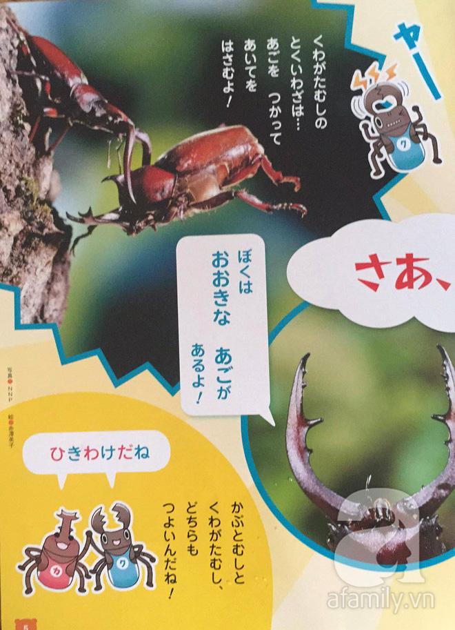 Thích thú với cách người Nhật dùng côn trùng làm giáo cụ dạy trẻ - Ảnh 4.