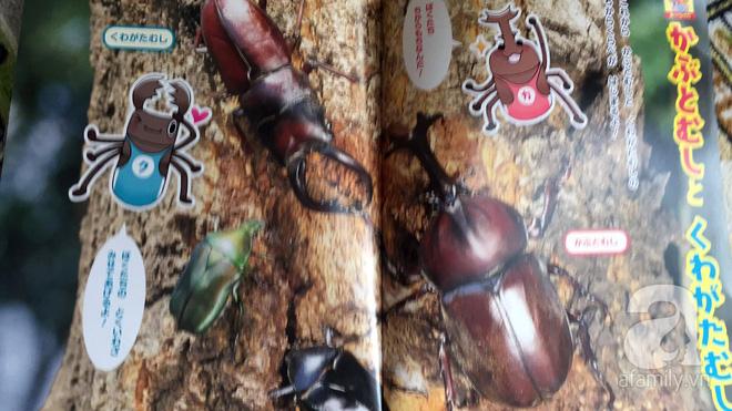 Thích thú với cách người Nhật dùng côn trùng làm giáo cụ dạy trẻ - Ảnh 3.