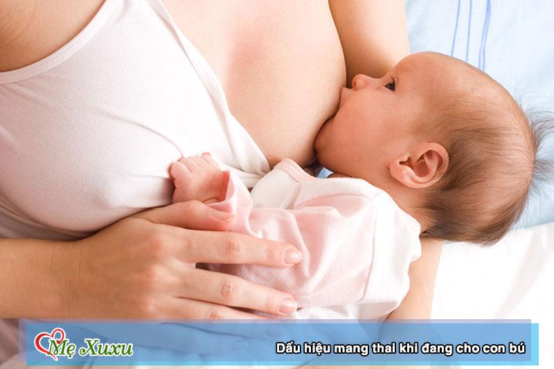 dấu hiệu có thai khi đang cho con bú